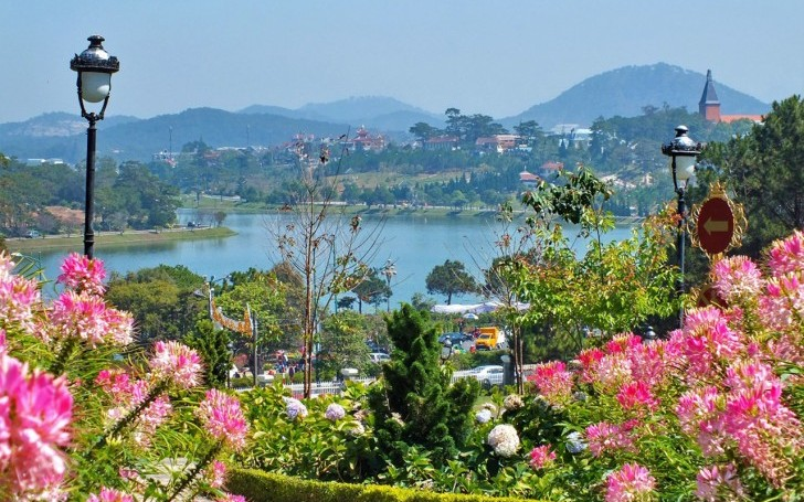 A Complete Travel Guide for Your Trip to Dalat, Vietnam